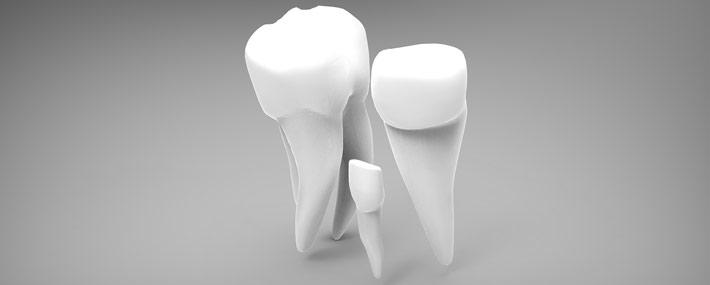 Wird grau kind zahn Zahn wird